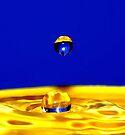 Water Drops by Matt Sillence