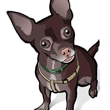 Taco (Chihuahua) by binarygod