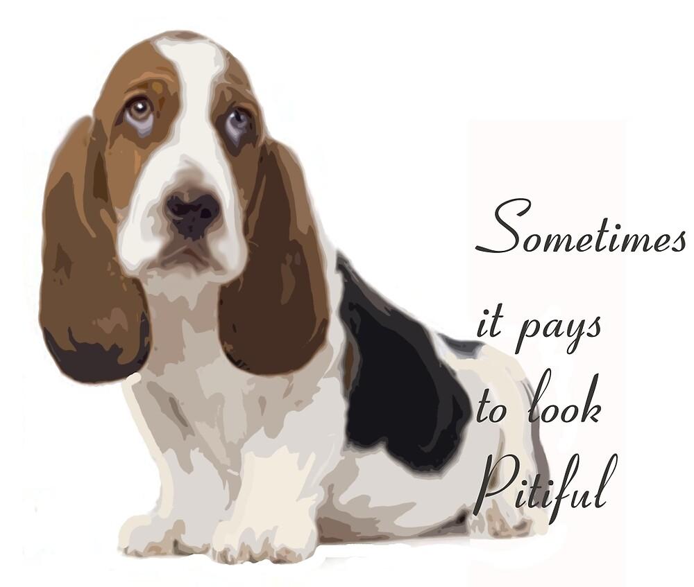 Pitiful puppy basset hound by IowaArtist