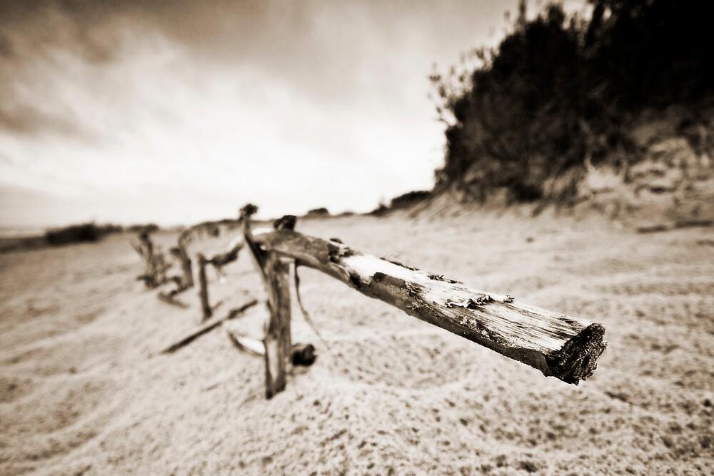 Fence by Csaba Jekkel