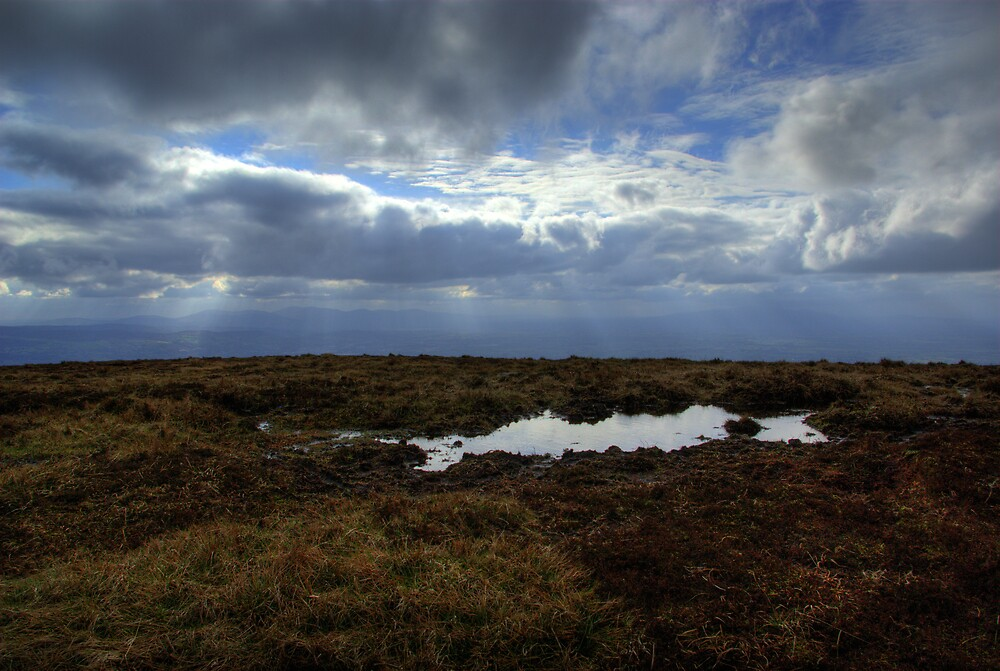A pool in the Grass and Clouds in the Sky- View from Summit of Slievenamon by Mark O'Toole