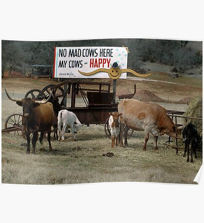 No Mad Cows Poster