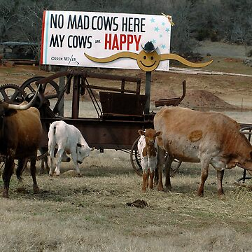 No Mad Cows by CameraView