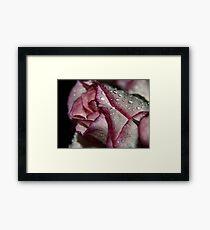 rasberry ripples Framed Print