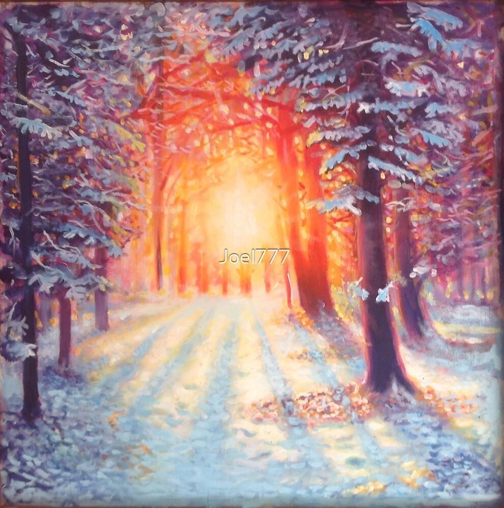Winter sun by Joel777