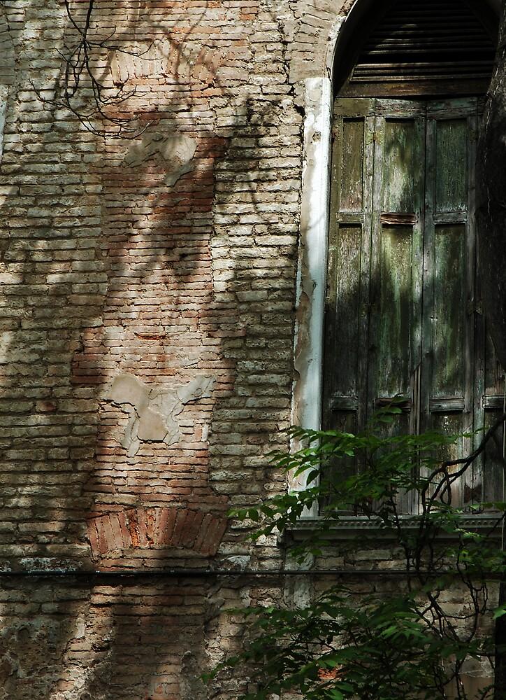 Canaletto's window Venice by ragman