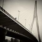 Rotterdam Erasmusbridge by Dirk van Laar