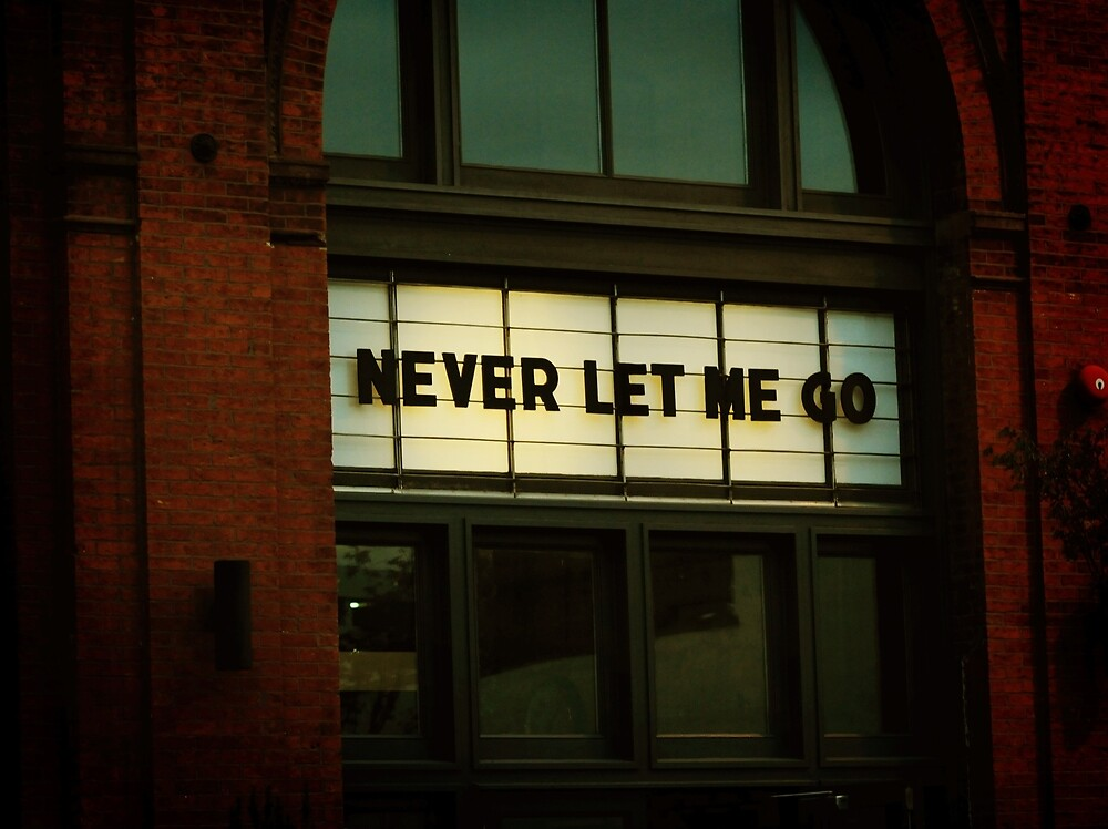 Never Let Me Go by trulyshannon