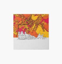 Podgorica, Montenegro, Skyline Map Art Board