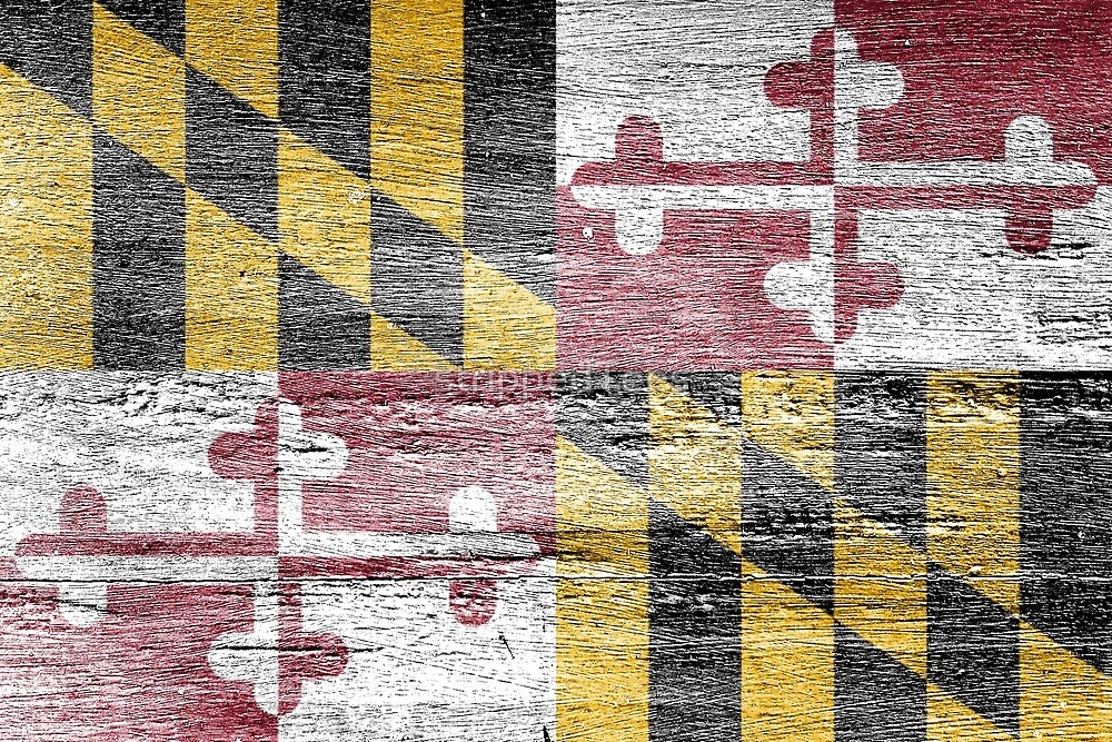 Maryland Flag by strippedTees
