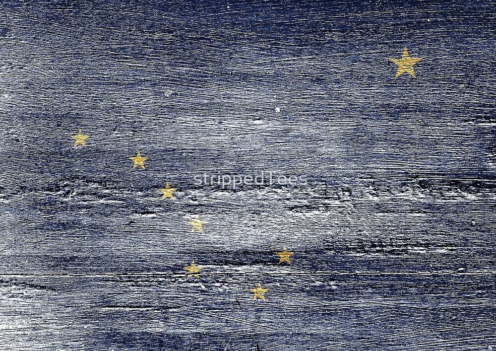 Alaska Flag by strippedTees