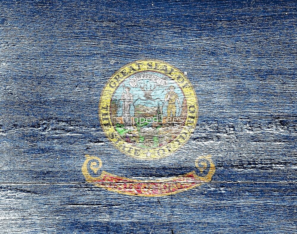 Idaho Flag by strippedTees