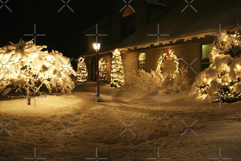 Christmas Lights by David Tate