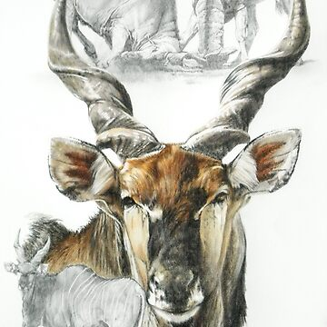 Giant Eland by BarbBarcikKeith