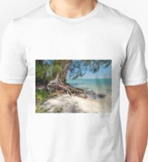 At the Pass Unisex T-Shirt