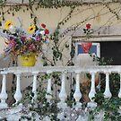 Corfu Greece  by mikequigley