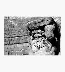 Hercules Photographic Print