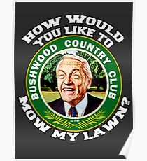 How would you like to mow my lawn? Poster