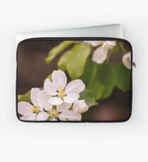 Apple blossoms Laptop Sleeve