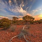 Sunset, Great Victoria Desert, WA by Kevin McGennan