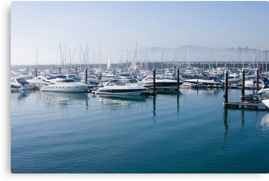 Torquay Marina by richard clarke