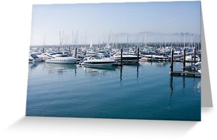 Torquay Marina by richard clarke