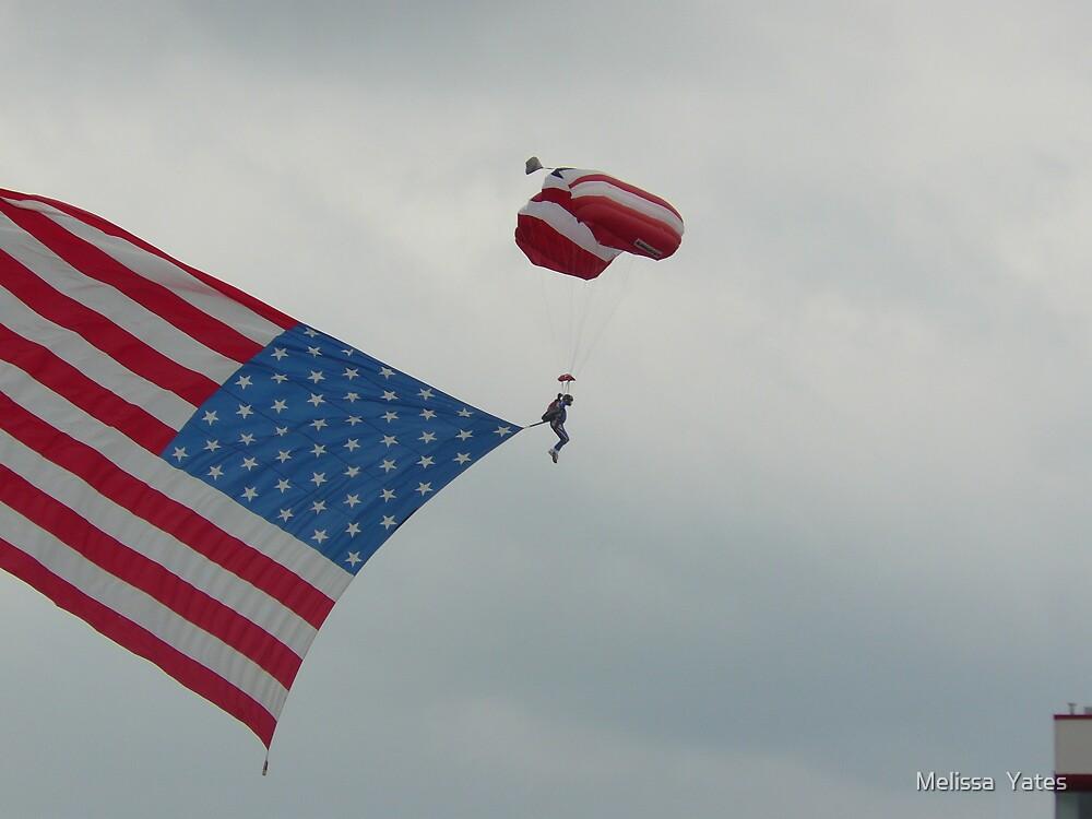 Patriotic Skydive by Melissa  Ousley
