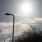 Street light by Kayleigh Sparks