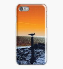 Seagull Pose on Beach iPhone Case/Skin