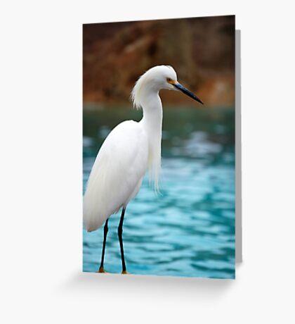Egret 2 Greeting Card
