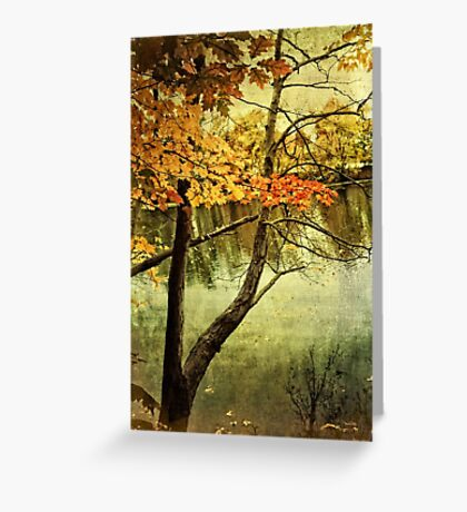 A Tranquil  Autumn Day Greeting Card
