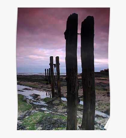 Old Wooden Posts Poster