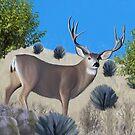 Buck Mule Deer Painting by Walter Colvin