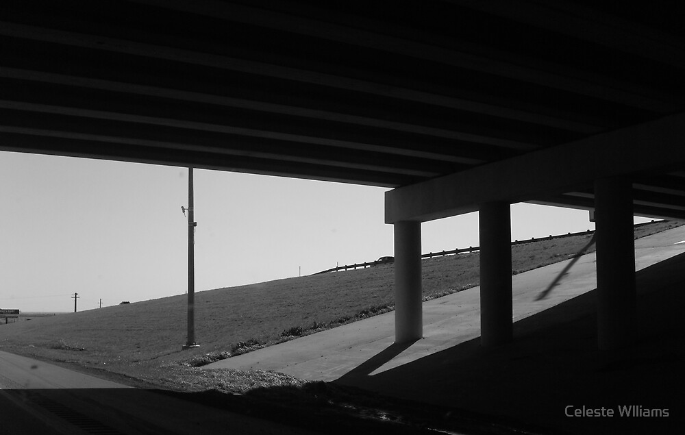 Under the highway by Celeste Wlliams