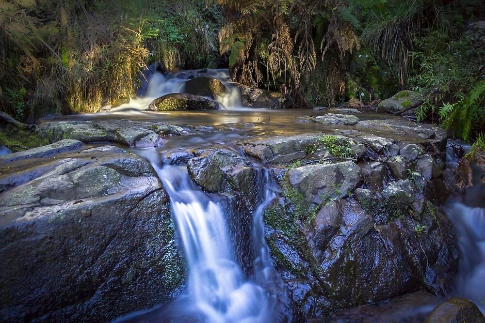 Mountain Stream by JeremyF