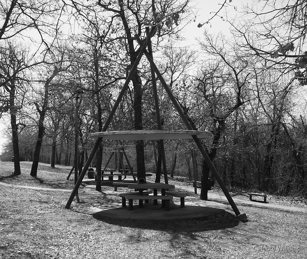 teepee picnic table by Celeste Wlliams