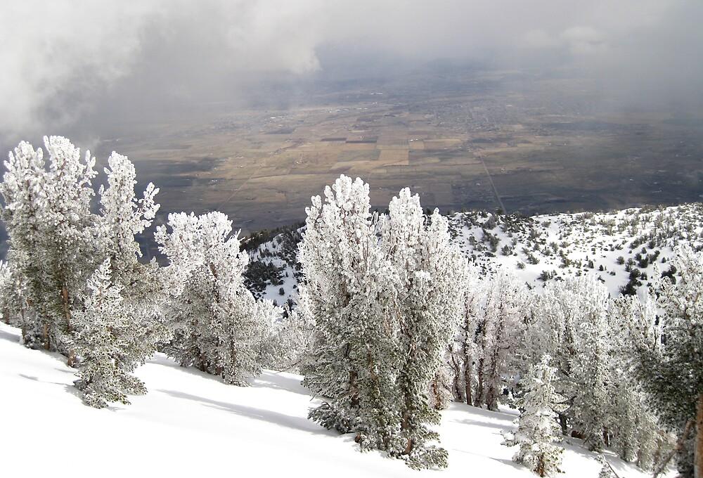 Storm over Douglas County, Nevada by PaulDuff