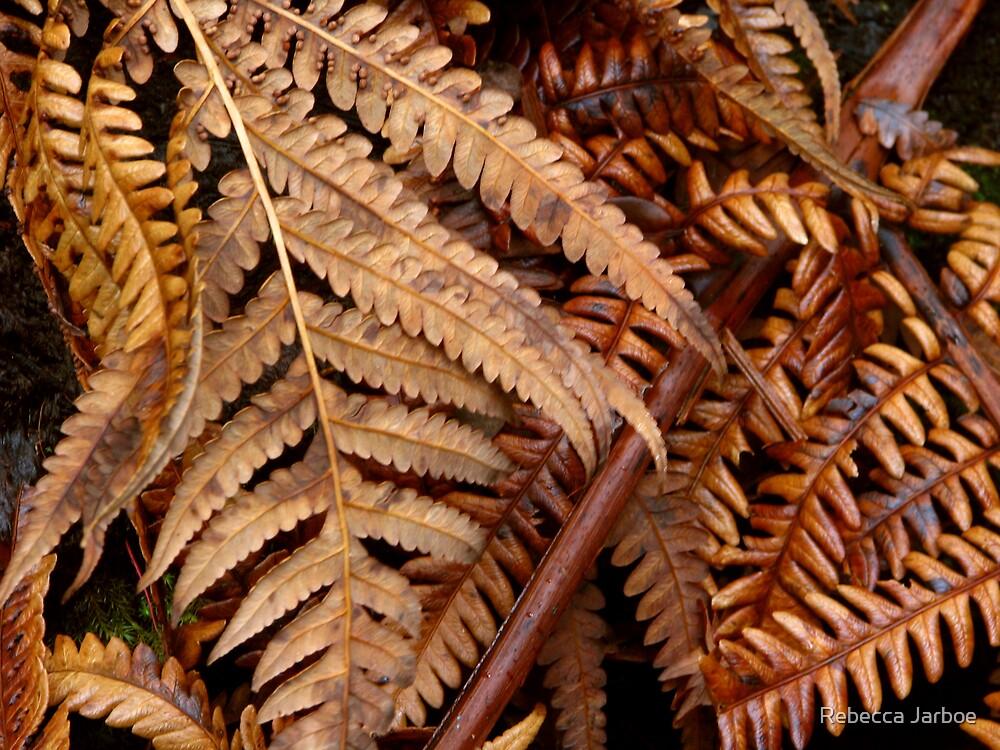 Bronzed Ferns by Rebecca Jarboe
