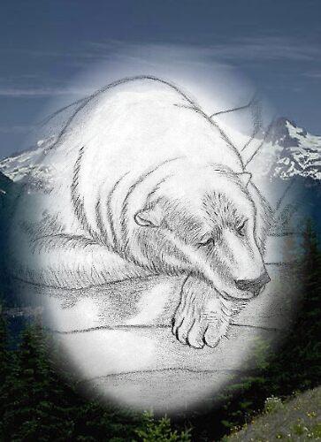 Polar Bear by ChadArt