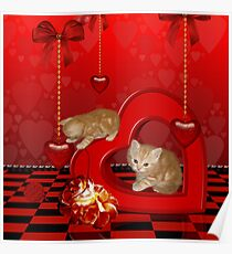 Cute, playing kitten  Poster