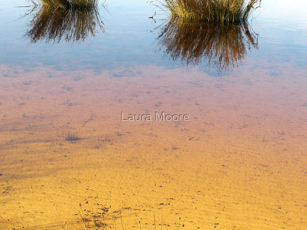 Colour of Reflection by Laura Moore