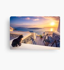 A black cat on a ledge at sunset at Fira town, with view of caldera, volcano and cruise ships, Santorini, Greece. Cloudy dramatic sky. Canvas Print