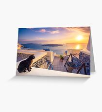 A black cat on a ledge at sunset at Fira town, with view of caldera, volcano and cruise ships, Santorini, Greece. Cloudy dramatic sky. Greeting Card