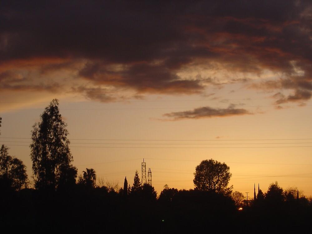 California Sunset  by Jerry Stewart