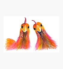 Happy Hens Chickens ' HARRIET & HUMBUG 2 ' by Shirley MacArthur Photographic Print