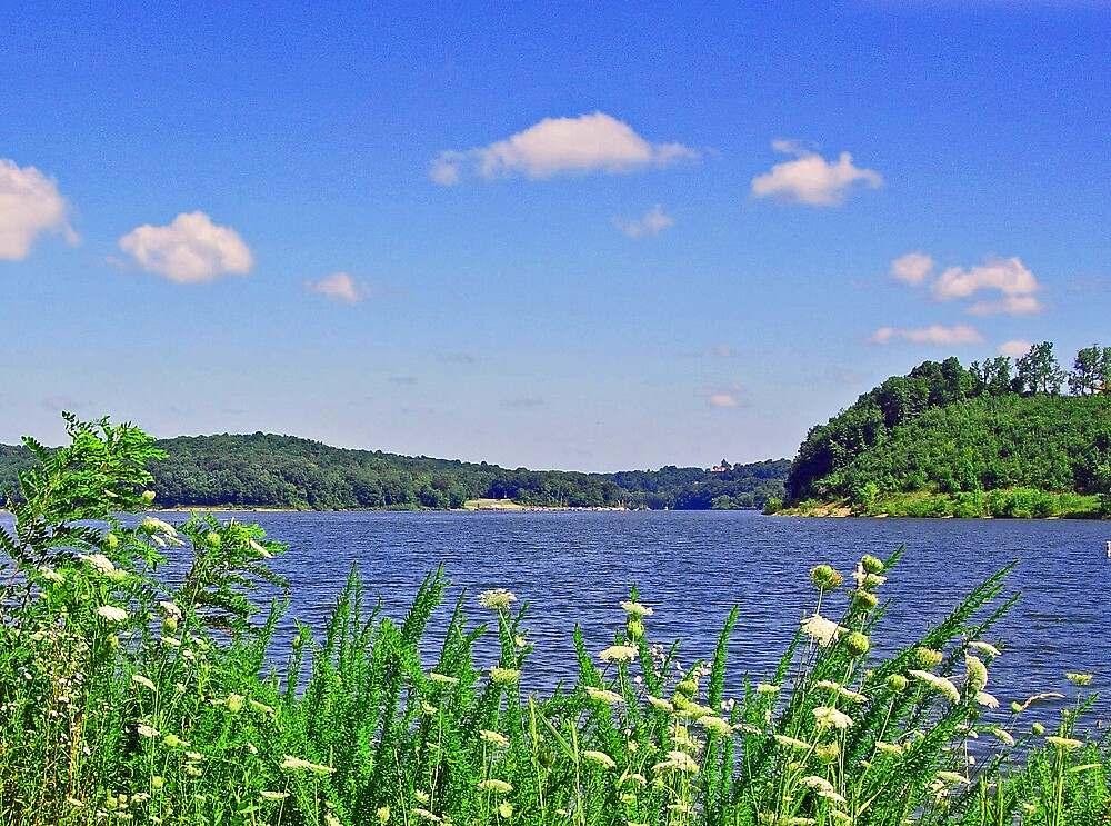Dillon Lake by terrylazar