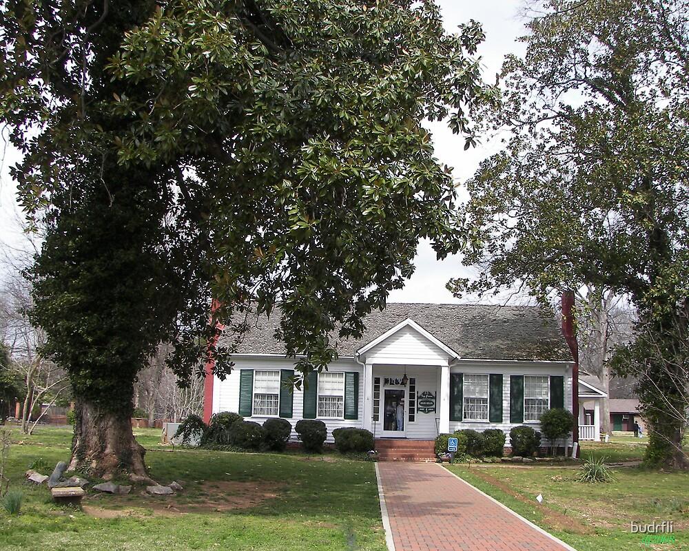 The Main House by budrfli