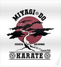 Karate Kid - Miyagi Do Poster