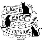 Home is where my cats are by bsilvia