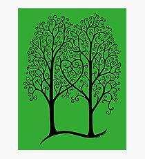 Interwoven Trees Photographic Print